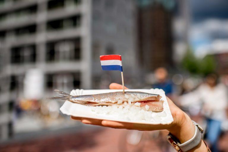Hollandse Nieuwe: de start van het haringseizoen