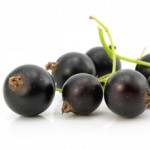 zwarte bessen - delicious