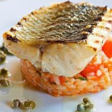 gegrilde zeebaars met risotto
