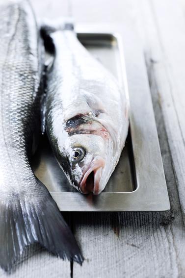zeebaars zoutkorst-delicious