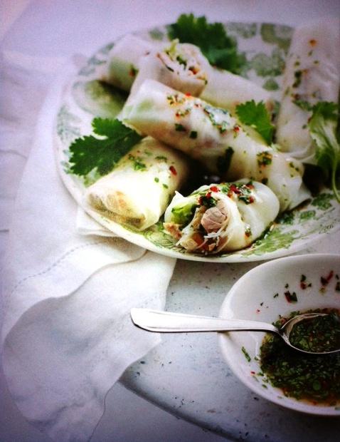 foutje in recept 'voorjaarsrolletjes met kip' uit delicious. hét kookboek