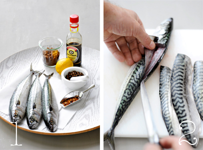 spicy makreel | delicious
