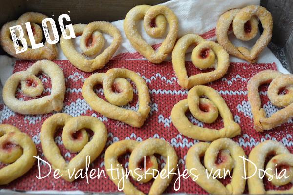 koekjes voor jouw valentijn