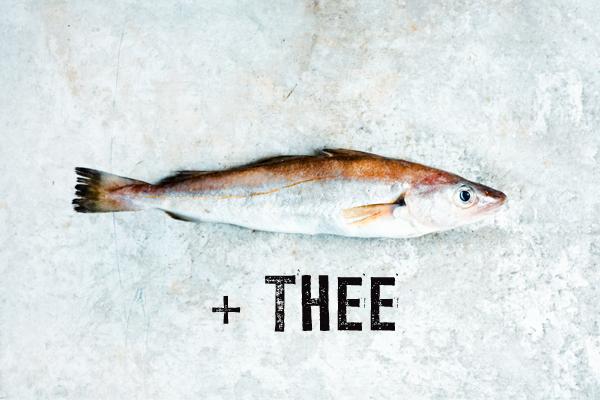 tips voor thee bij spartelverse vis
