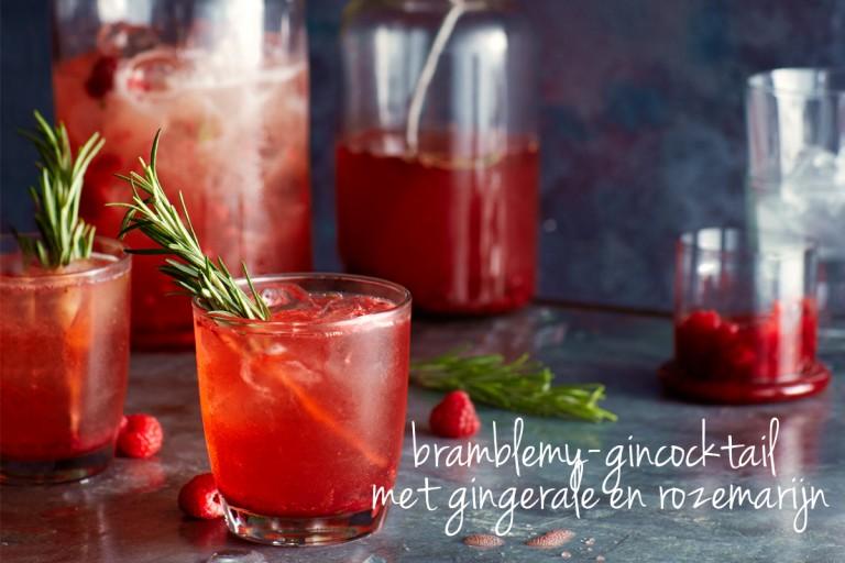 bramblemy-cocktail met gin, gingerale en rozemarijn