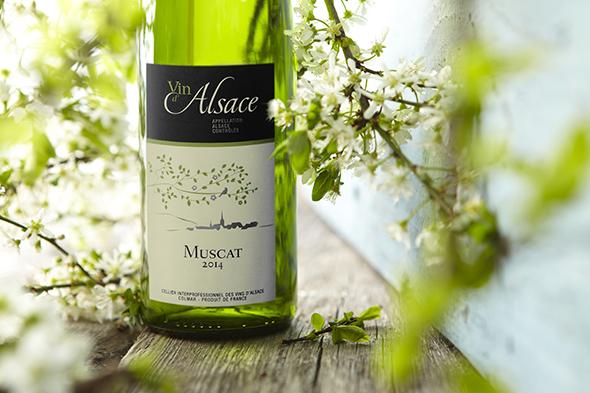 dé aspergewijn: Muscat d'Alsace