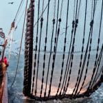 vismarkten
