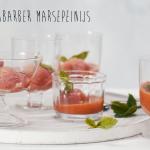 aarbei-rabarber-marsepeinijs