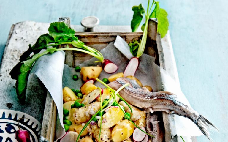radijssalade met krieltjes en haring