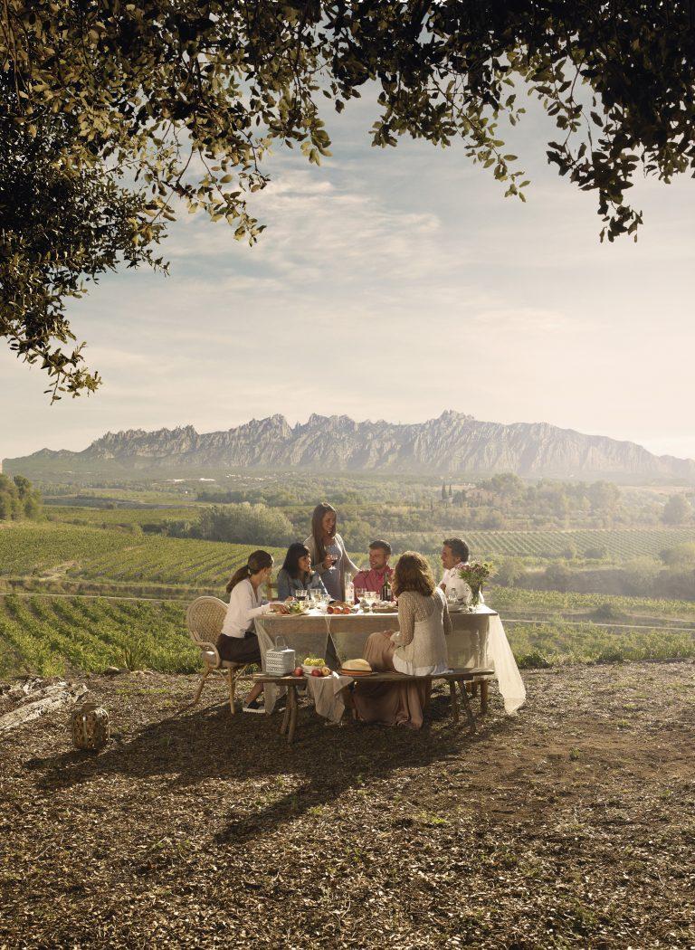 Ontdek slokje voor slokje: Catalaanse wijn
