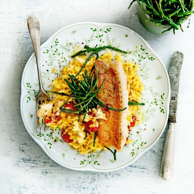 roodbaarshaasje met romige saffraanzeekraalrisotto - delicious