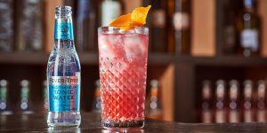 alcoholvrij-fevertree-delicious