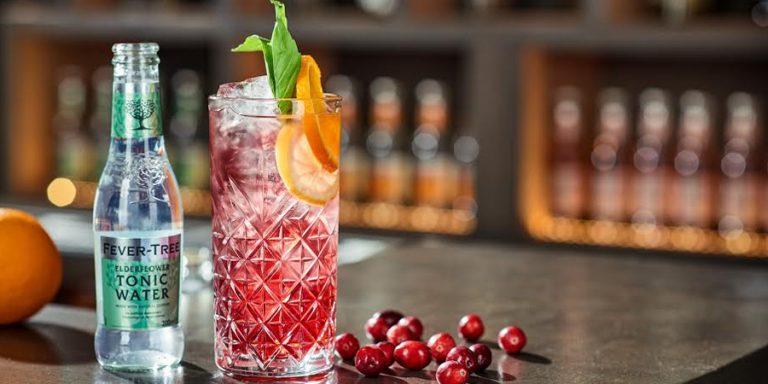 Dit wordt jouw showstop-cocktail met kerst: gin-tonic met