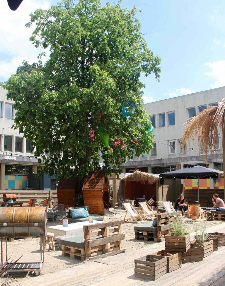 Bajes Beach Club - delicious
